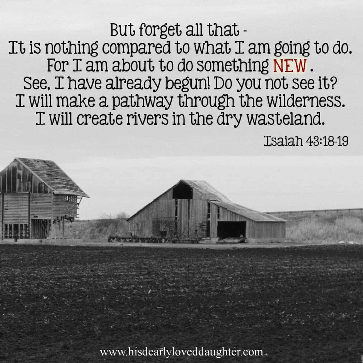 But forget all that - It is nothing compared to what I am going to do. For I am about to do something new. See, I have already begun! Do you not see it? I will make a pathway through the wilderness. I will create rivers in the dry wasteland. Isaiah 43:18-19