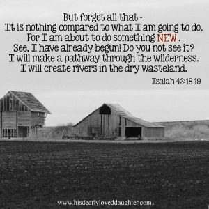 But forget all that - It is nothing compared to what I am going to do. For I am about to do something NEW. See. I have already begun! Do you not see it? I will make a pathway through the wilderness. I will create rivers in the dry wasteland. Isaiah 43:18-19 #Verses #Bible #Scripture #truth #WordOfGod #HisDearlyLovedDaughter