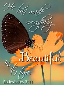 He has made everything beautiful in its time. Ecclesiastes 3:11 #Verses #Bible #Scripture #truth #WordOfGod #HisDearlyLovedDaughter