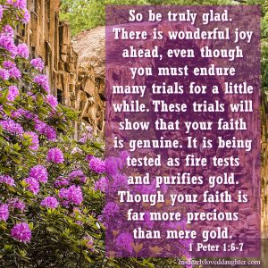 So be truly glad, there is wonderful joy ahead, even though you must endure many trials for a little while. These trials will show that your faith is genuine. It is being tested as fire tests and purifies gold. Though your faith is far more precious than gold. 1 Peter 6:7 #hisdearlyloveddaughter #bible #verses #wordofGod #truth