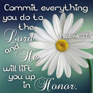 Commit everything you do to the Lord and He will lift you up in honor. Psalms 37:5 #Verses #Bible #truth #Scripture #WordOfGod #HisDearlyLovedDaughter