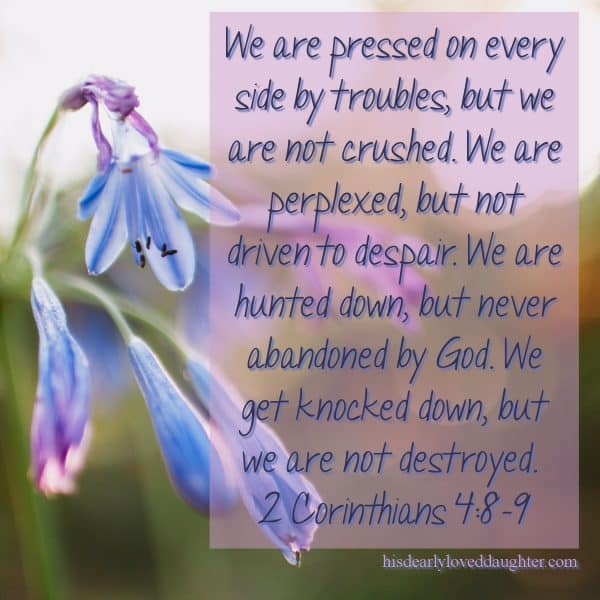 We are pressed on every side by troubles, but we are not crushed. We are perplexed, but not driven to despair. We are hunted down, but never abandoned by God. We get knocked down, but we are not destroyed. 2 Corinthians 4:8-9
