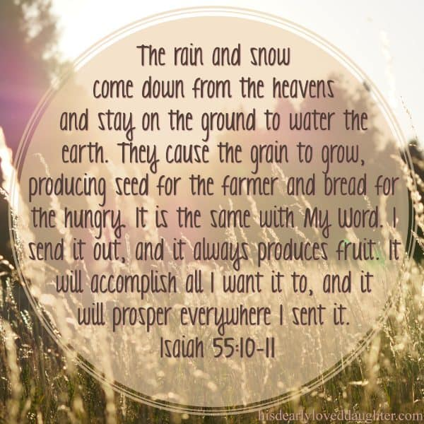 The rain and snow come down from the heavens and stay on the ground to water the earth. They cause the grain to grow, producing seed for the farmer and bread for the hungry. It is the same with My Word. I send it out, and it always produces fruit. It will accomplish all I want it to, and it will prosper everywhere I send it. Isaiah 55:10-11