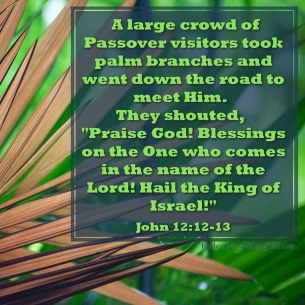 "A large crowd of Passover visitors took palm branches and went down the road to meet Him. They shouted, ""Praise God! Blessings on the One who comes in the name of the Lord! Hail the King of Israel!"" John 12:12-13"