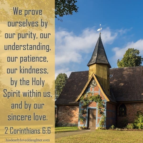 We prove ourselves by our purity, our understanding, our patience, our kindness, by the Holy Spirit within us, and by our sincere love. 2 Corinthians 6:6