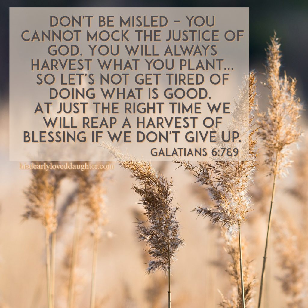 Don't be misled – you cannot mock the justice of God. You will always harvest what you plant... So let's not get tired of doing what is good. At just the right time we will reap a harvest of blessing if we don't give up. Galatians 6:7&9 #HisDearlyLovedDaughter #HopeForToday #verseoftheday #BibleStudy #WordOfGod #truth #Scripture #verses #bible