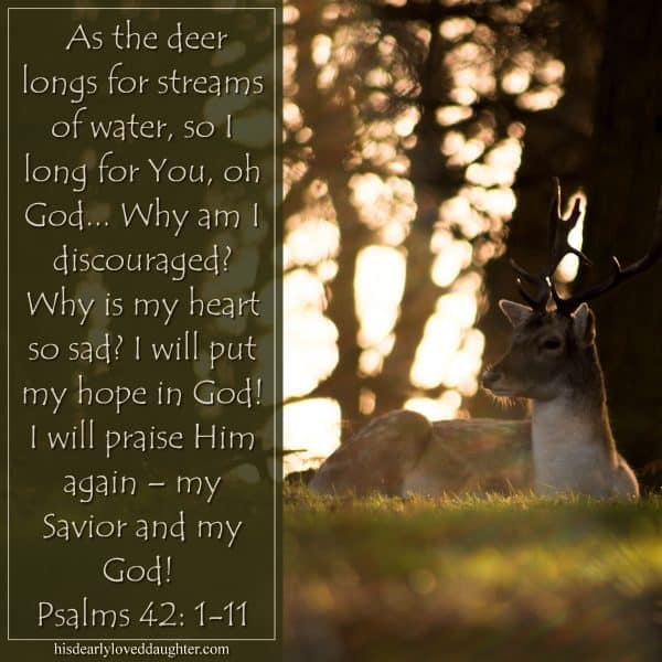 As the deer longs for streams of water, so I long for You, oh God... Why am I discouraged? Why is my heart so sad? I will put my hope in God! I will praise Him again – my Savior and my God! Psalms 42: 1-11