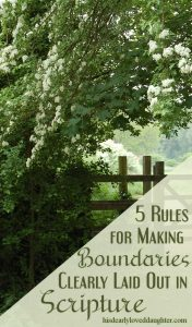 5 Rules from Scripture for making Biblical Boundaries #hisdearlyloveddaughter #boundaries #betrayaltraumarecovery #marriage #biblicalboundaries #godinthehardplaces #imitateGod #biblestudy