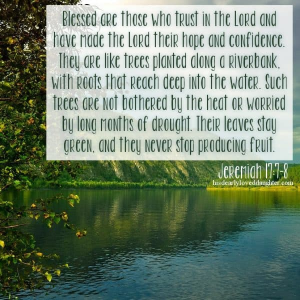 Blessed are those who trust in the Lord and have made the Lord their hope and confidence. They are like trees planted along a riverbank, with roots that reach deep into the water. Such trees are not bothered by the heat or worried by long months of drought. Their leaves stay green, and they never stop producing fruit. Jeremiah 17:7-8