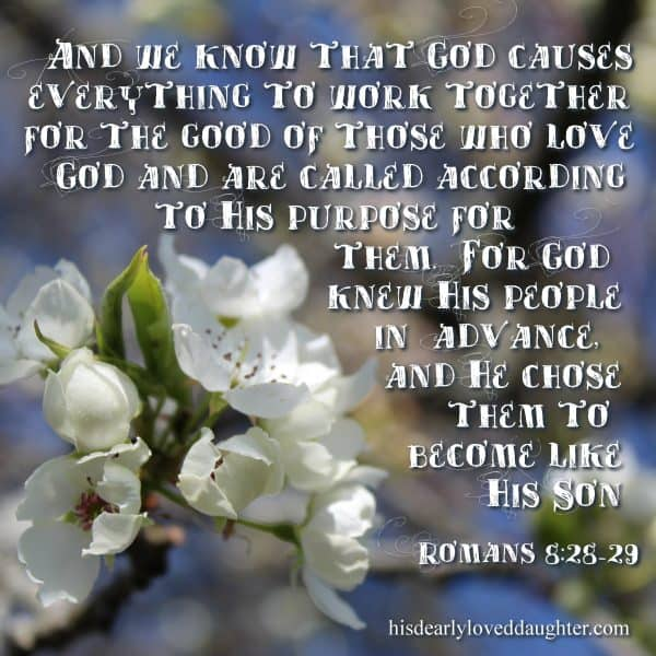 Ans we know that God causes everything to work together for the good of those who love God and are called according to His purposes for them. For God knew His people in advance, and He chose them to become like His Son. Romans 8:28-29