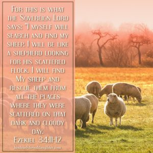 "For this is what the Sovereign Lord says: ""I will search and find my sheep. I will be like a shepherd looking for his scattered flock. I will find My sheep and rescue them from the places where they were scattered on that dark and cloudy day."" Ezekiel 34:11-12"