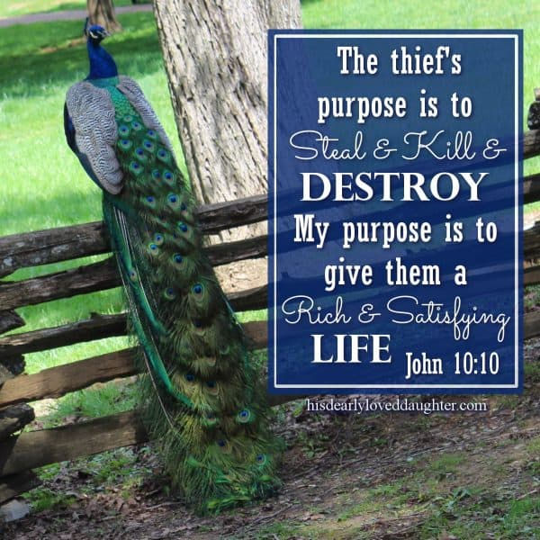 The thief's purpose is to steal and kill and destroy. My purpose is to give them a rich and satisfying life. John 10:10
