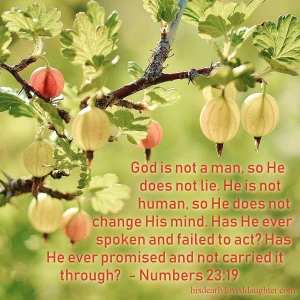 God is not a man, so He does not lie. He is not human, so He does not change His mind. Has He ever spoken and failed to act? Has He ever promised and not carried it through? Numbers 23:19