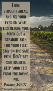 Look straight ahead, and fix your eyes on what lies before you. Mark out a straight path for your feet; stay on the safe path. Don't get sidetracked; keep your feet from following evil. Proverbs 4:25-27
