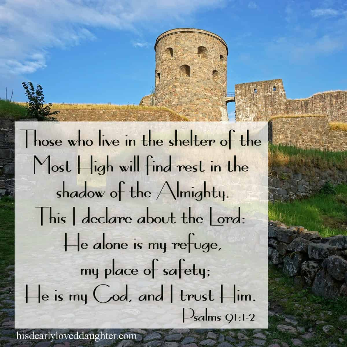 Those who live in the shelter of theMost Highwill find rest in the shadow of the Almighty. This I declare about the Lord: He alone is my refuge, my place of safety; He is my God, and I trust Him.Psalms 91:1-2