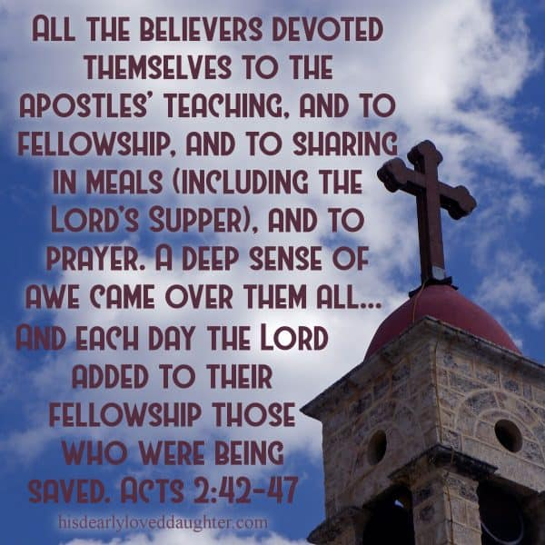 All the believers devoted themselves to the apostles' teaching, and to fellowship, and to sharing in meals (including the Lord's Supper), and to prayer. A deep sense of awe came over them all... And each day the Lord added to their fellowship those who were being saved. Acts 2:42-47