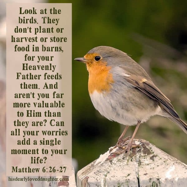 Look at the birds. They don't plant or harvest or store food in barns, for your Heavenly Father feeds them. And aren't you far more valuable to Him than they are? Can all your worries add a single moment to your life? Matthew 6:26-27