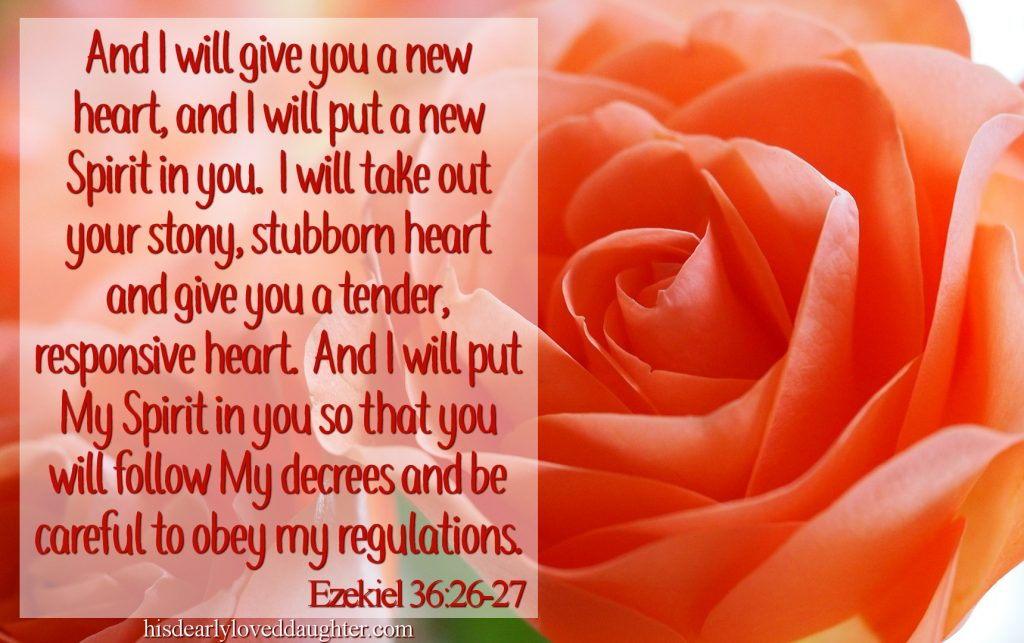 And I will give you a new heart and I will put a new Spirit in you. I will take away your stony stubborn heart and give you a tender heart. And I will put my Spirit in you so that you will know My decrees and be able to obey my regulations. Ezekiel 36:26-27