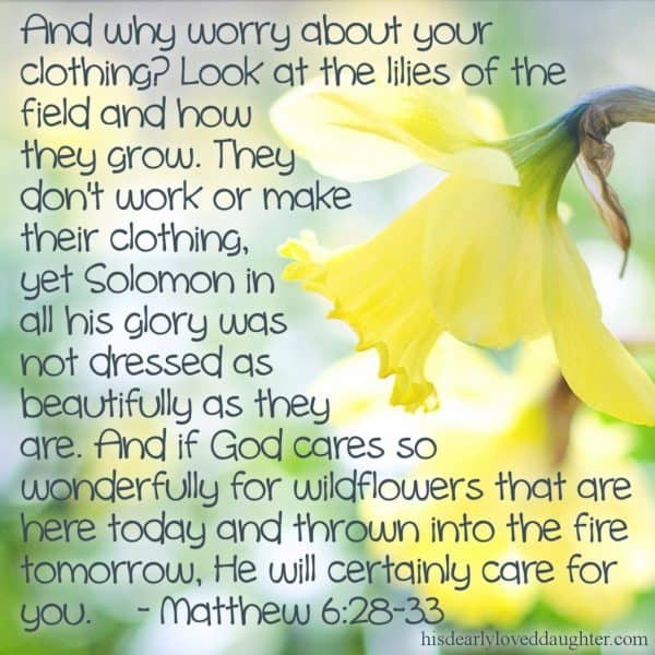And why worry about your clothing? Look at the lilies of the field and how they grow. They don't work or make their clothing, yet Solomon in all his glory was not dressed as beautifully as they are. And if God cares so wonderfully for wildflowers that are here today and thrown into the fire tomorrow, He will certainly care for you. Matthew 6:28-33