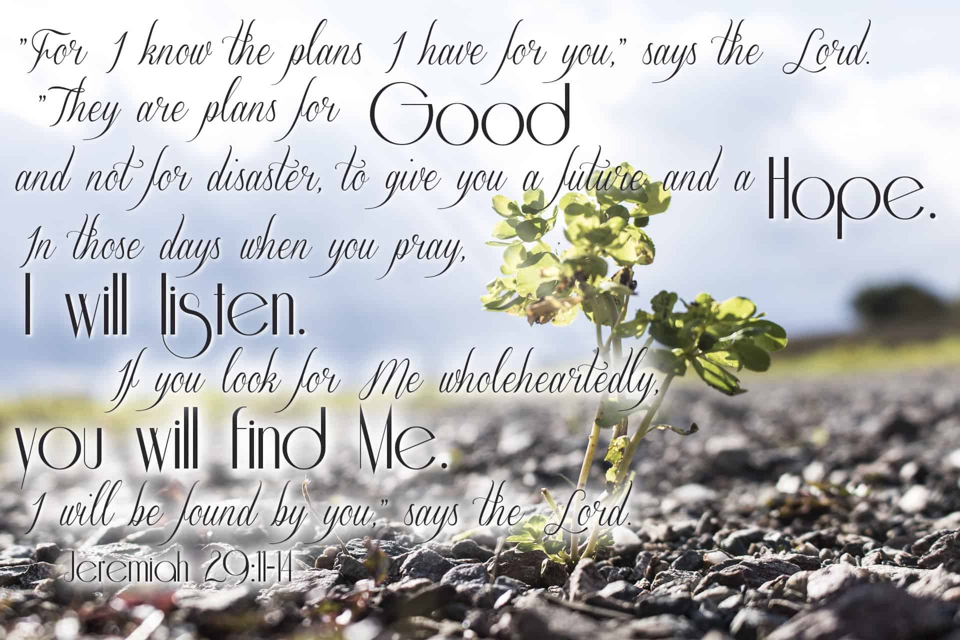 "Jeremiah 29:11-14 – ""For I know the plans I have for you,"" says the Lord. ""They are plans for good and not for disaster, to give you a future and a hope. In those days when you pray, I will listen. If you look for Me wholeheartedly, you will find Me. I will be found by you,"" says the Lord."