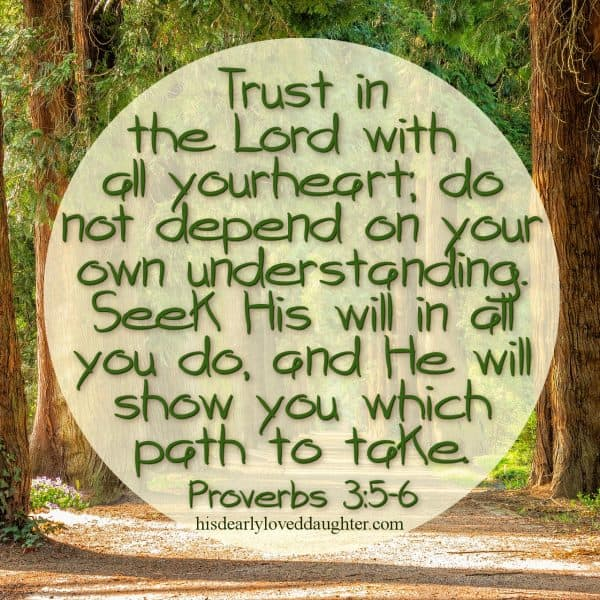 Trust in the Lord with all your heart; do not depend on your own understanding. Seek His will in all you do, and He will show you which path to take. Proverbs 3:5-6