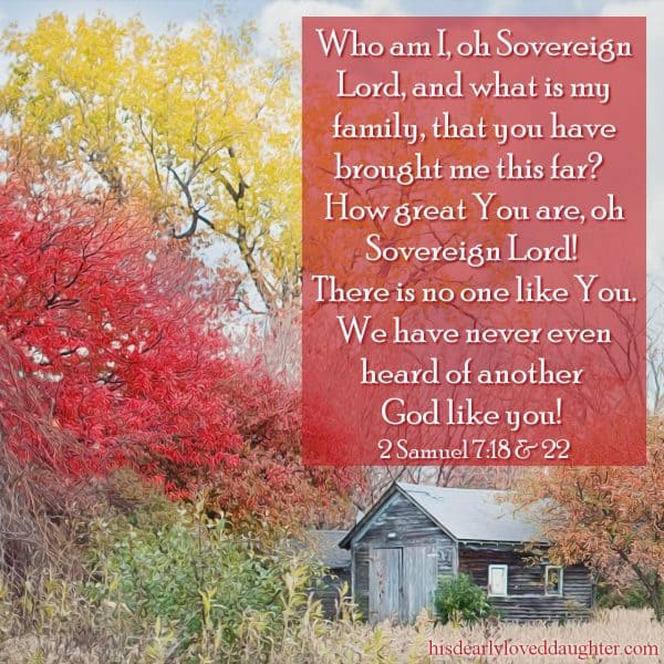 Who am I, oh Sovereign Lord, and what is my family, that you have brought me this far?How great You are, oh Sovereign Lord! There is no one like You. We have never even heard of another God like you! 2 Samuel 7:18 & 22