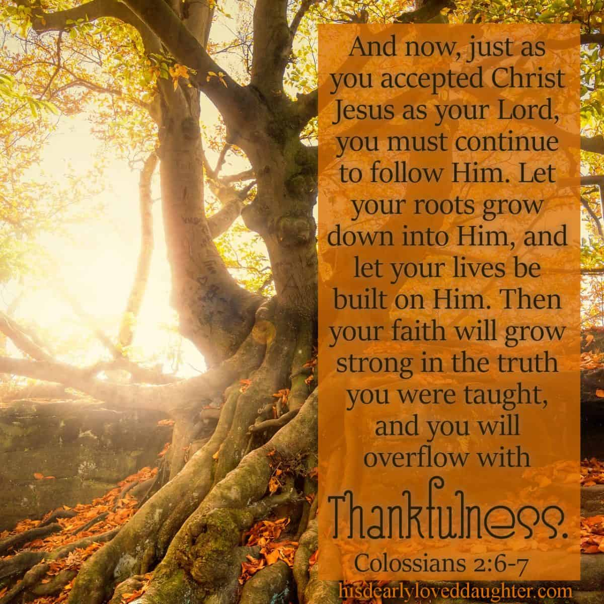 And now, just as you accepted Christ Jesus as your Lord, you must continue to follow Him. Let your roots grow down into Him, and let your lives be built on Him. Then your faith will grow strong in the truth you were taught, and you will overflow with thankfulness. Colossians 2:6-7