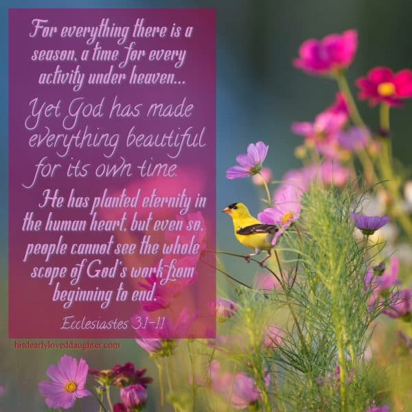 For everything there is a season, a time for every activity under heaven... Yet God has made everything beautiful for its own time. He has planted eternity in the human heart, but even so, people cannot see the whole scope of God's work from beginning to end. Ecclesiastes 3:1-11