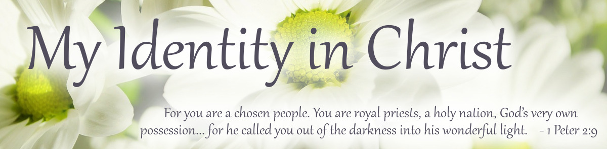 My Identity in Christ Catagory cover