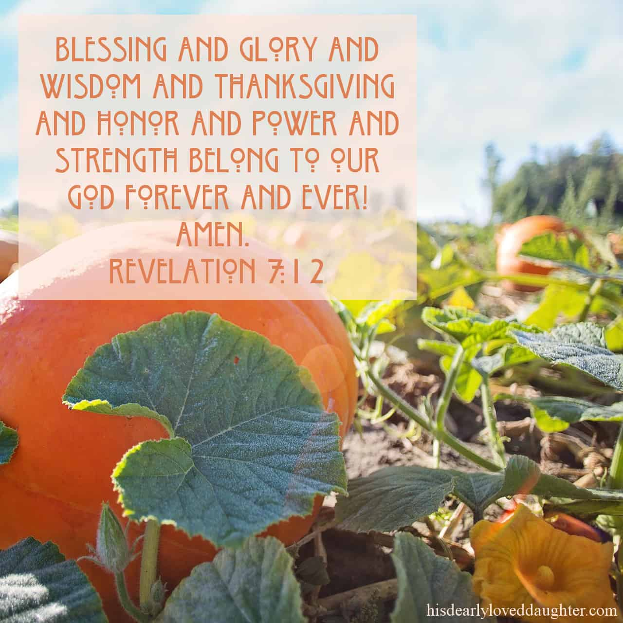 Blessing and glory and wisdom and thanksgiving and honor and power and strength belong to our God forever and ever! Amen. Revelation 7:12