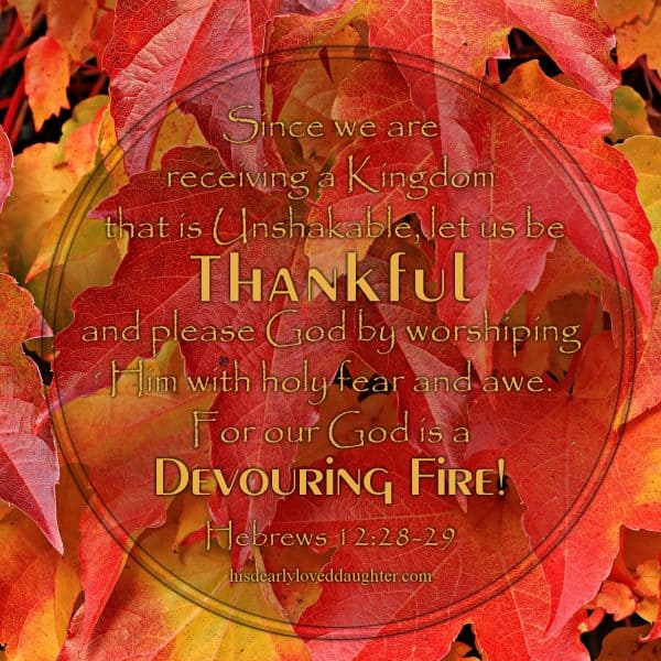 Since we are receiving a Kingdom that is unshakable, let us be thankful and please God by worshiping him with holy fear and awe. For our God is a devouring fire. Hebrews 12:28-29