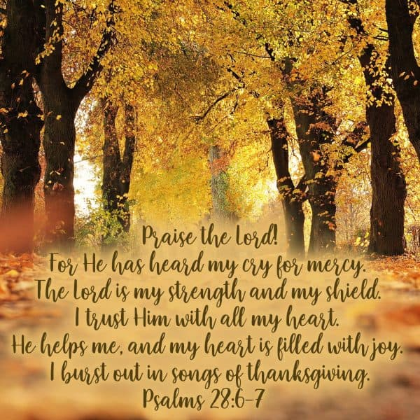 Praise the Lord! For He has heard my cry for mercy. The Lord is my strength and my shield. I trust Him with all my heart. He helps me, and my heart is filled with joy. I burst out in songs of thanksgiving. Psalms 28:6-7