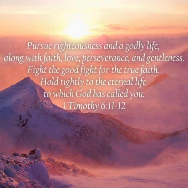 Pursue righteousness and a godly life, along with faith, love, perseverance, and gentleness. Fight the good fight for the true faith. Hold tightly to the eternal life to which God has called you. 1 Timothy 6:11-12