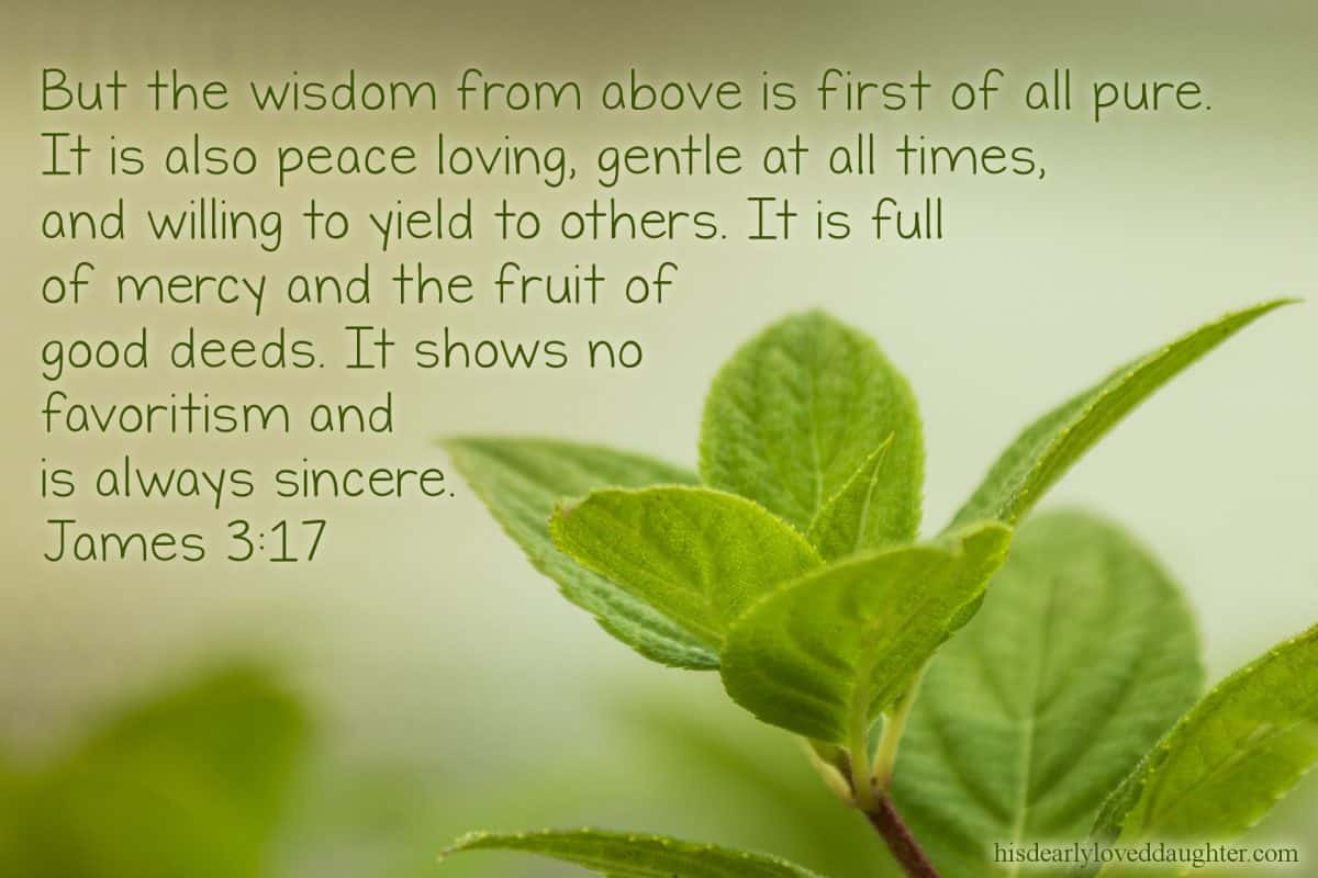 But the wisdom from above is first of all pure. It is also peace loving, gentle at all times, and willing to yield to others. It is full of mercy and the fruit of good deeds. It shows no favoritism and is always sincere. James 3:17