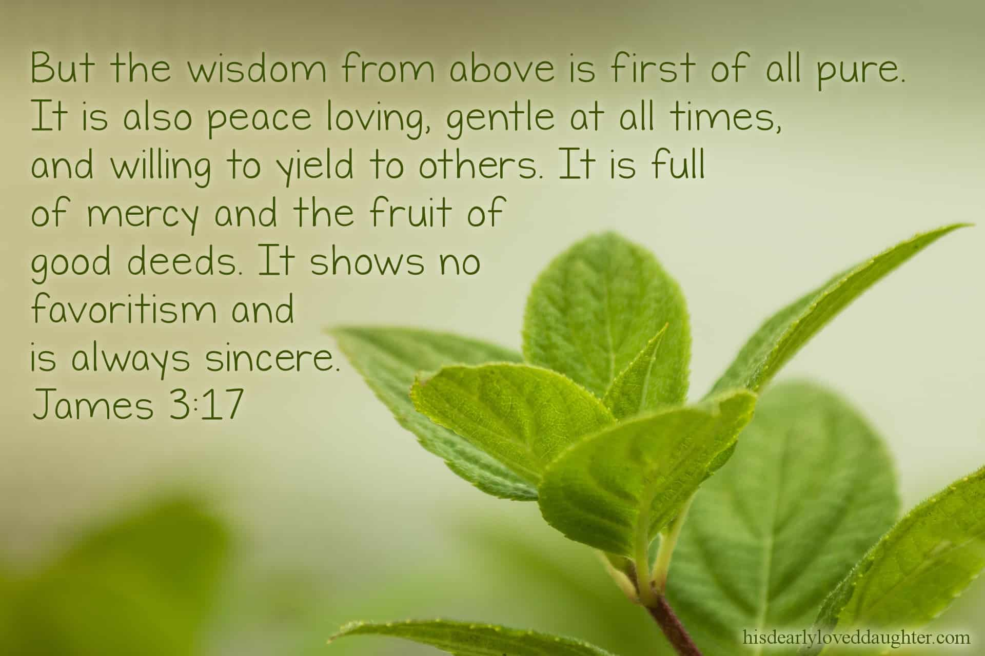 But the wisdom from above is first of all pure. It is also peace loving, gentle at all times, and willing to yield to others. It is full of mercy and the fruit of good deeds. It shows no favoritism and is always sincere. James 3:17 (Jonah Bible story)