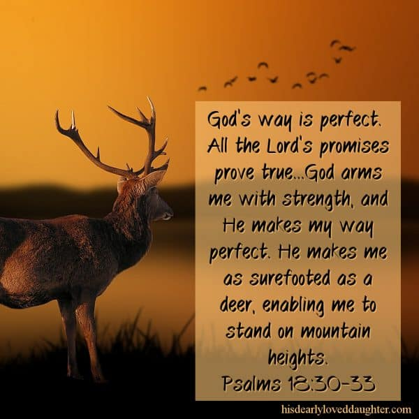 God's way is perfect.  All the Lord's promises prove true...God arms me with strength, and He makes my way perfect. He makes me as surefooted as a deer, enabling me to stand on mountain heights. Psalms 18:30-33