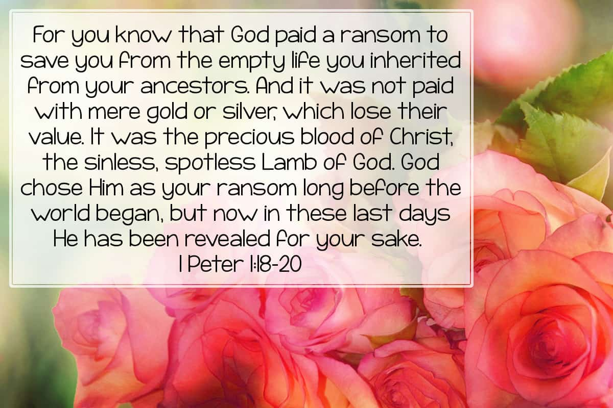 For you know that God paid a ransom to save you from the empty life you inherited from your ancestors. And it was not paid with mere gold or silver, which lose their value. It was the precious blood of Christ, the sinless, spotless Lamb of God. God chose Him as your ransom long before the world began, but now in these last days He has been revealed for your sake. 1 Peter 1:18-20