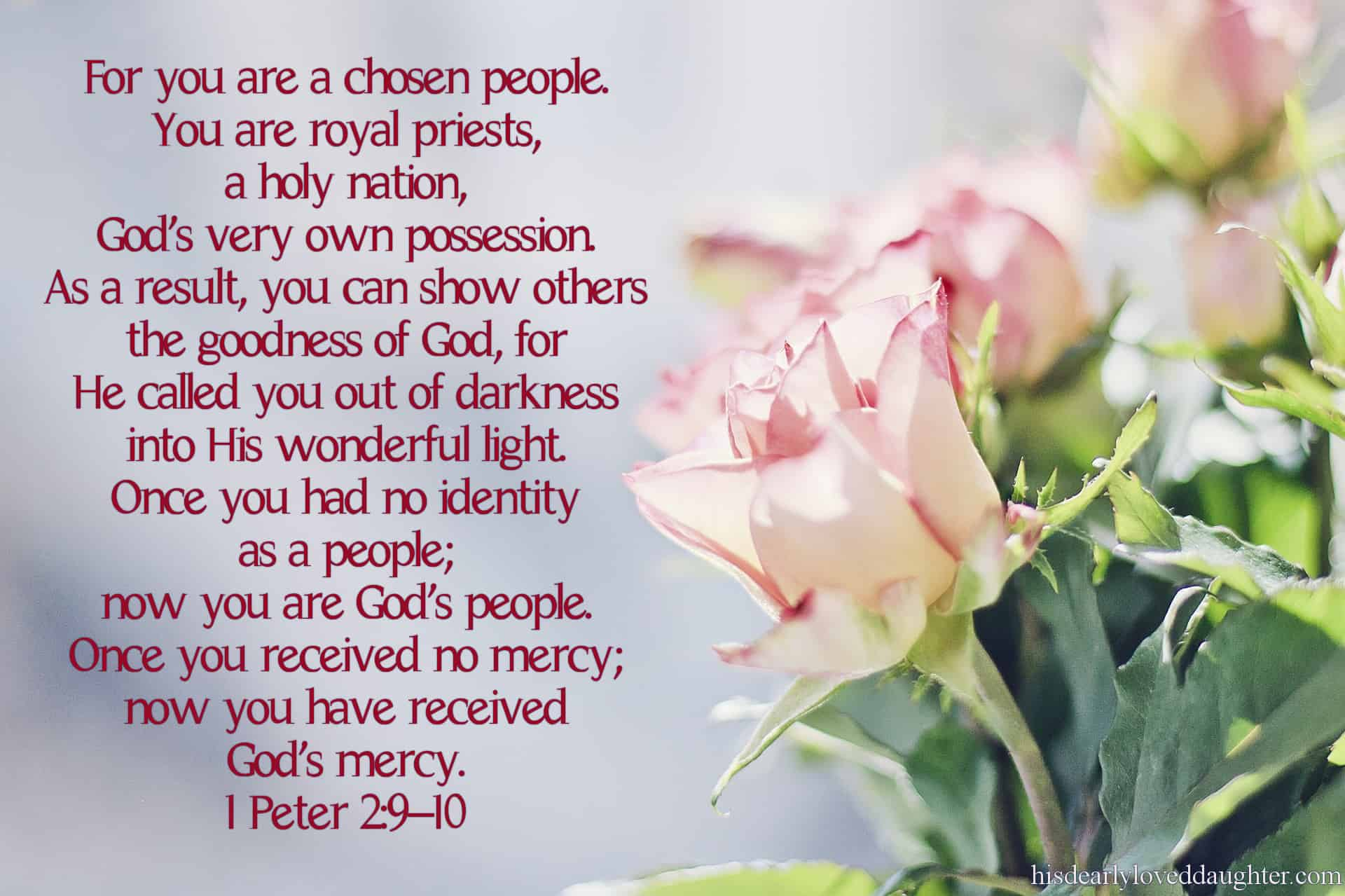 For you are a chosen people. You are royal priests, a holy nation, God's very own possession. As a result, you can show others the goodness of God, for He called you out of darkness into His wonderful light. Once you had no identity as a people; now you are God's people. Once you received no mercy; now you have received God's mercy. 1 Peter 2:9-10