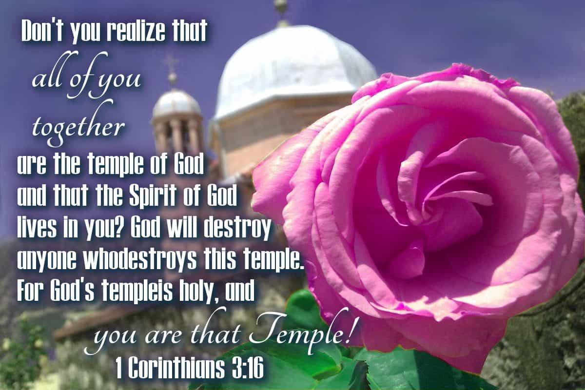 Don't you realize that all of you together are the temple of God and that the Spirit of God lives in you? God will destroy anyone who destroys this temple. For God's temple is holy, and YOU ARE THAT TEMPLE! 1 Corinthians 3:16