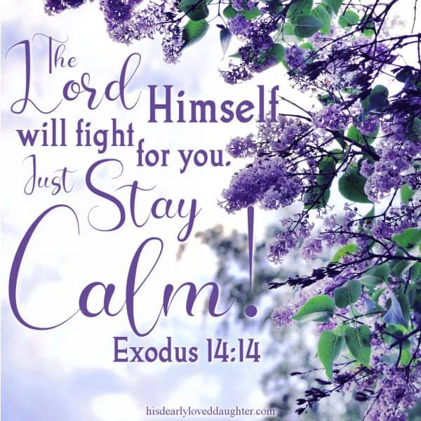 The Lord Himself will fight for you. Just stay calm! Exodus 14:14