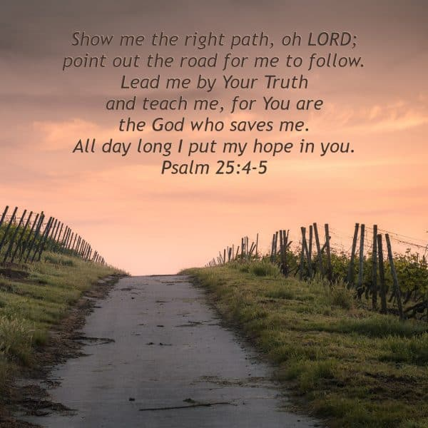 Show me the right path, oh LORD; point out the road for me to follow.  Lead me by Your Truth and teach me, for You are the God who saves me.  All day long I put my hope in you. Psalm 25:4-5
