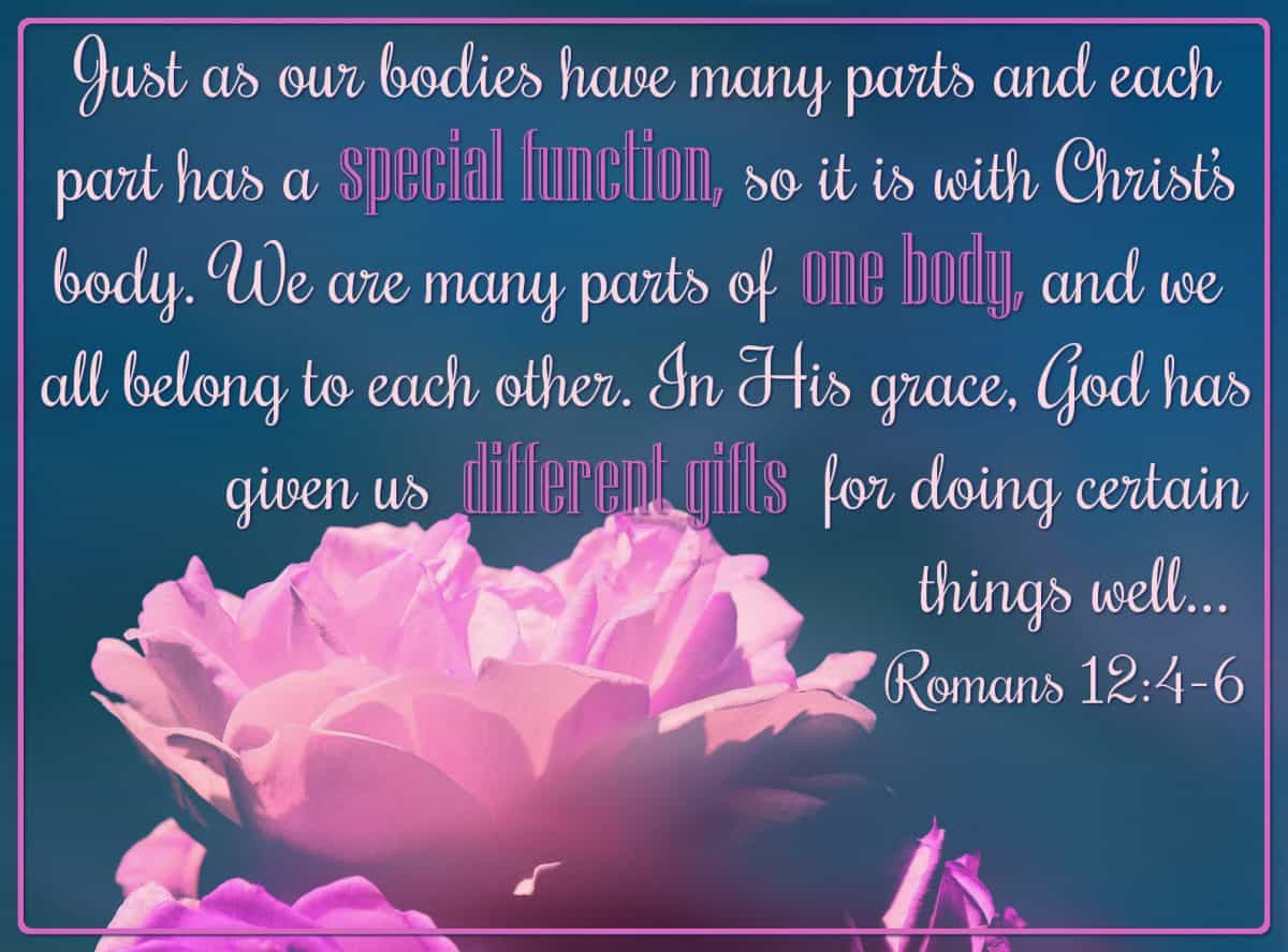 Just as our bodies have many parts and each part has a special function, so it is with Christ's body. We are many parts of one body, and we all belong to each other. In His grace, God has given us different gifts for doing certain things well.... Romans 12:4-6