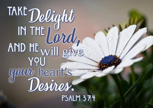 Take delight in the Lord, and He will give you your heart's Desires Psalm 37:4 verse image for my delight is in the Lord section