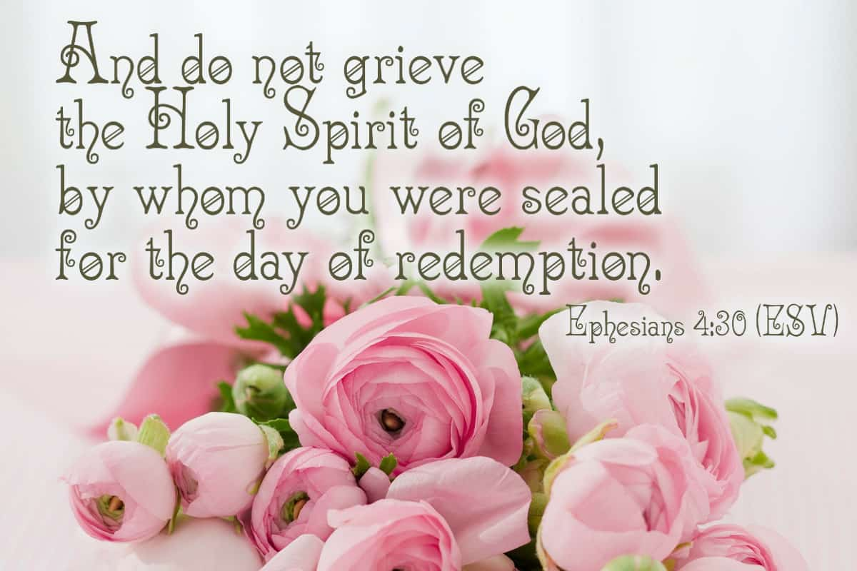 And do not grieve the Holy Spirit of God, by whom you were sealed for the day of redemption. Ephesians 4:30 (ESV)