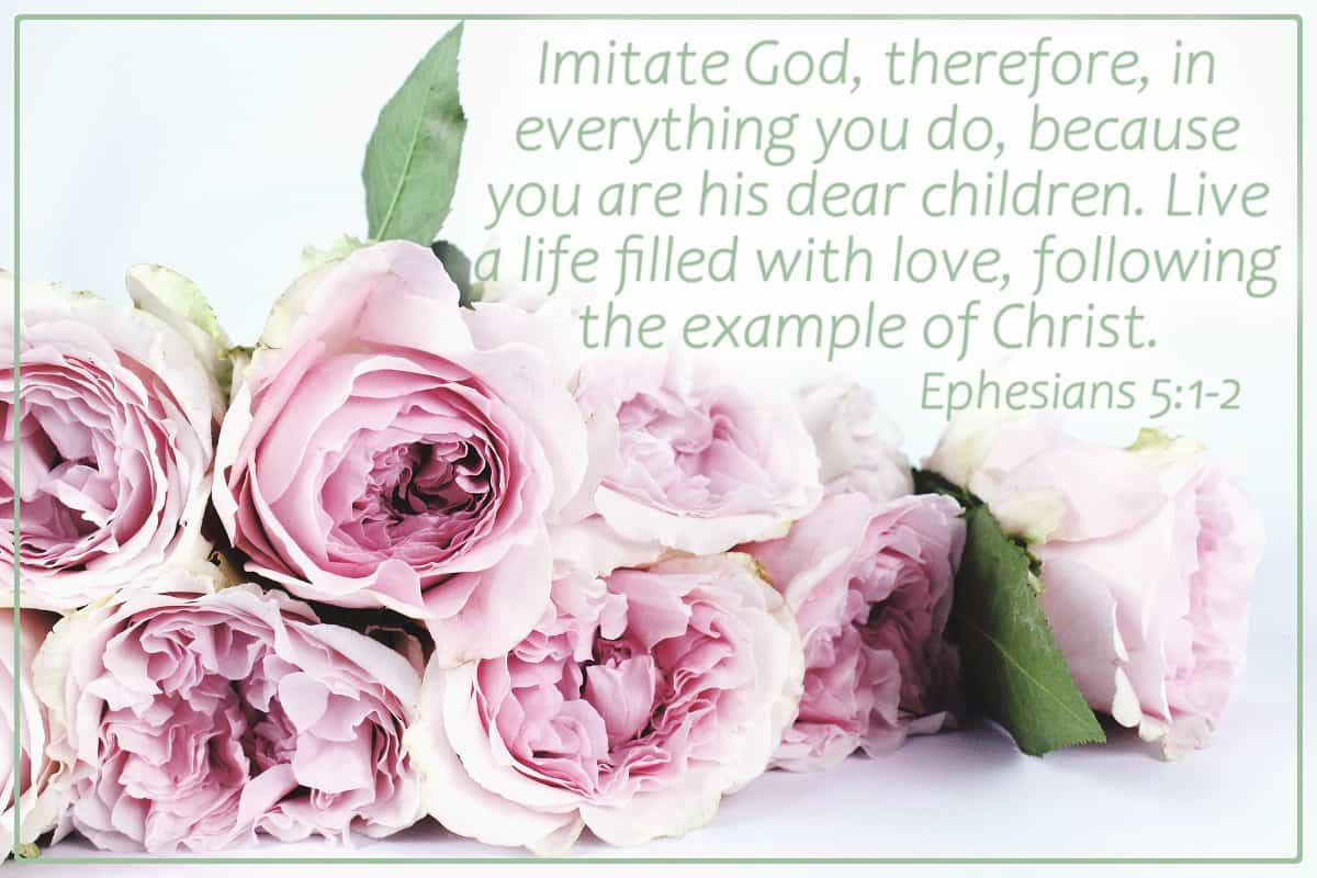 Imitate God, therefore, in everything you do, because you are His dear children. Live a life filled with love, following the example of Christ. Ephesians 5:1-2