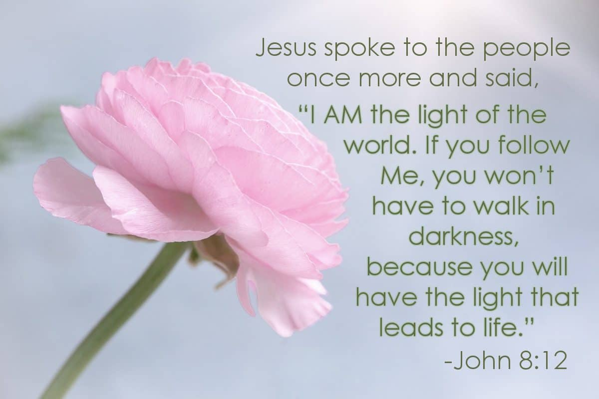 "Jesus spoke to the people once more and said, ""I AM the light of the world. If you follow Me, you won't have to walk in darkness, because you will have the light that leads to life."" John 8:12"