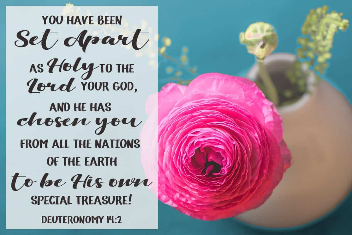 You have been set apart as holy to the Lord your God, and he has chosen you from all the nations of the earth to be his own special treasure. Deuteronomy 14:2
