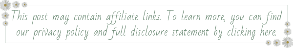 This post may contain affiliate links. To learn more, you can find our privacy policy and full disclosure statement by clicking here.