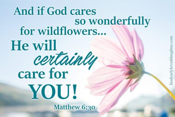 And if God cares so wonderfully for wildflowers... He will certainly care for YOU! Matthew 6:30