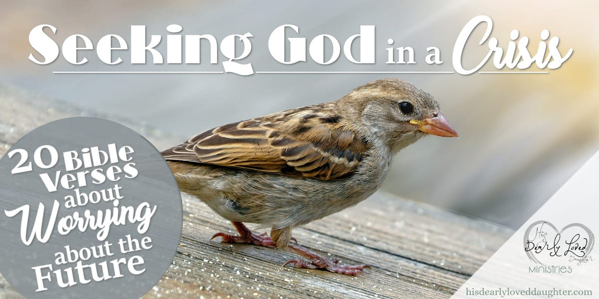 Seeking God in a Crisis: Bible Verses about Worrying about the Future